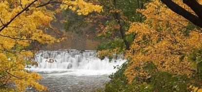 New York Botanical Garden waterfall