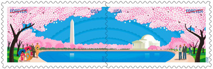 Cherry Blossom Postage Stamp