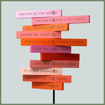 mesostic poem: BAYLEAFTREE