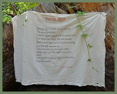 Wesley - The Turtle - River of Words