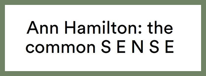 Ann Hamilton - the common SENSE