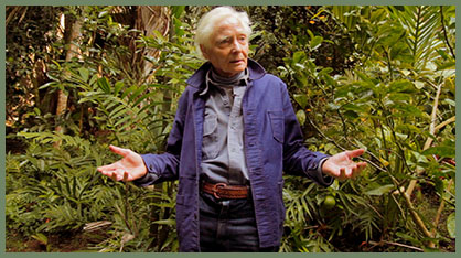 W.S. Merwin: To Plant a Tree
