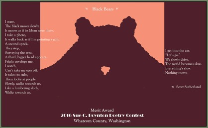 Black Bears - Scott Sutherland